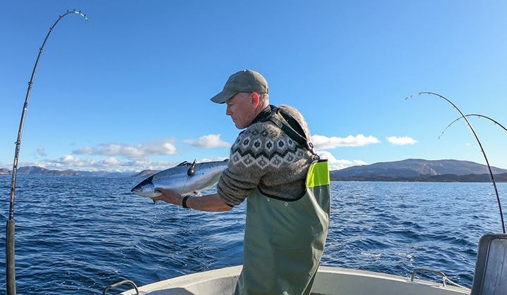Jonathan Carr Releases Salmon in Greenland Waters